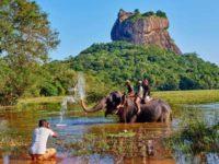 Фото Шри Ланка глазами туристов - горящие туры на Шри Ланку из Киева